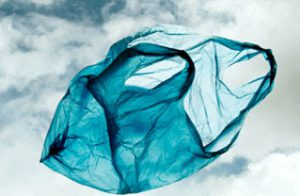 ECO GEEK: The Majestic Plastic Bag