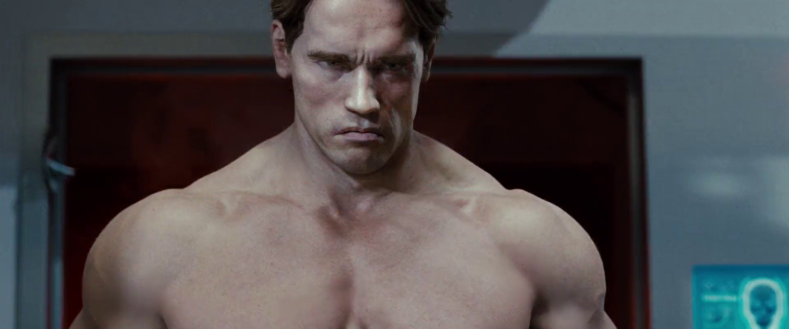 Arnold+Schwarzenegger+2+-+Terminator+Salvation
